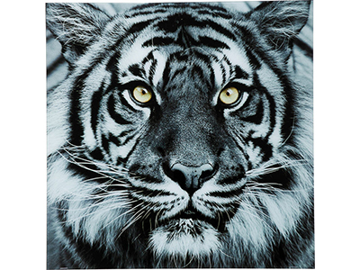home-decor/wall-decor/kare-tiger-face-picture-glass